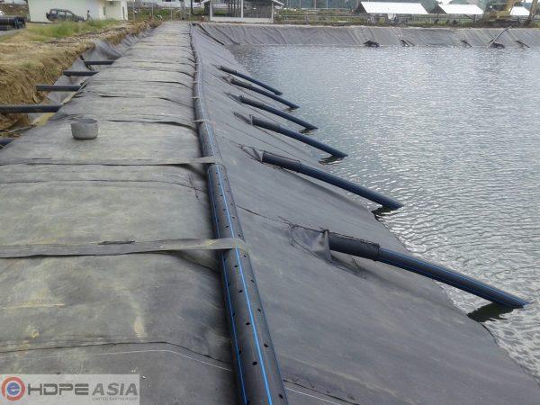 Ham-biogas-tinh-bot-san
